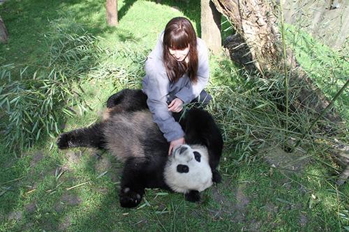 Pandas Get Hiccups
