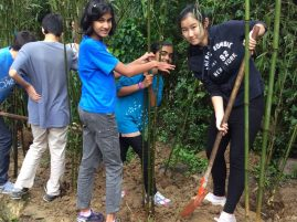 They help us by planting bamboo in our natural habitat area.